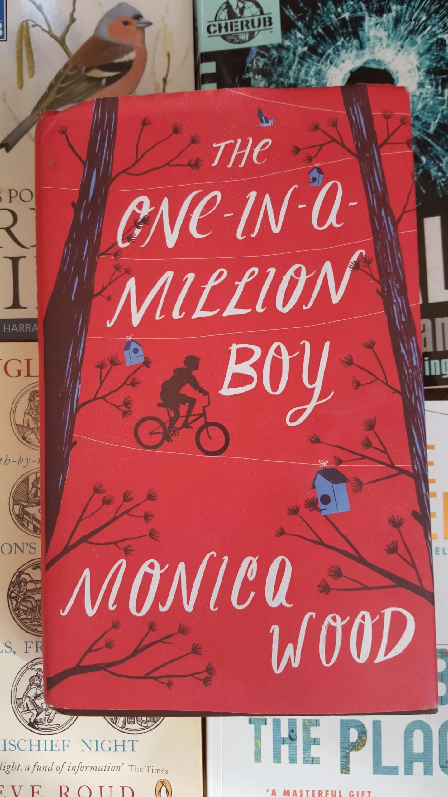 One-in-a-million-boy cover