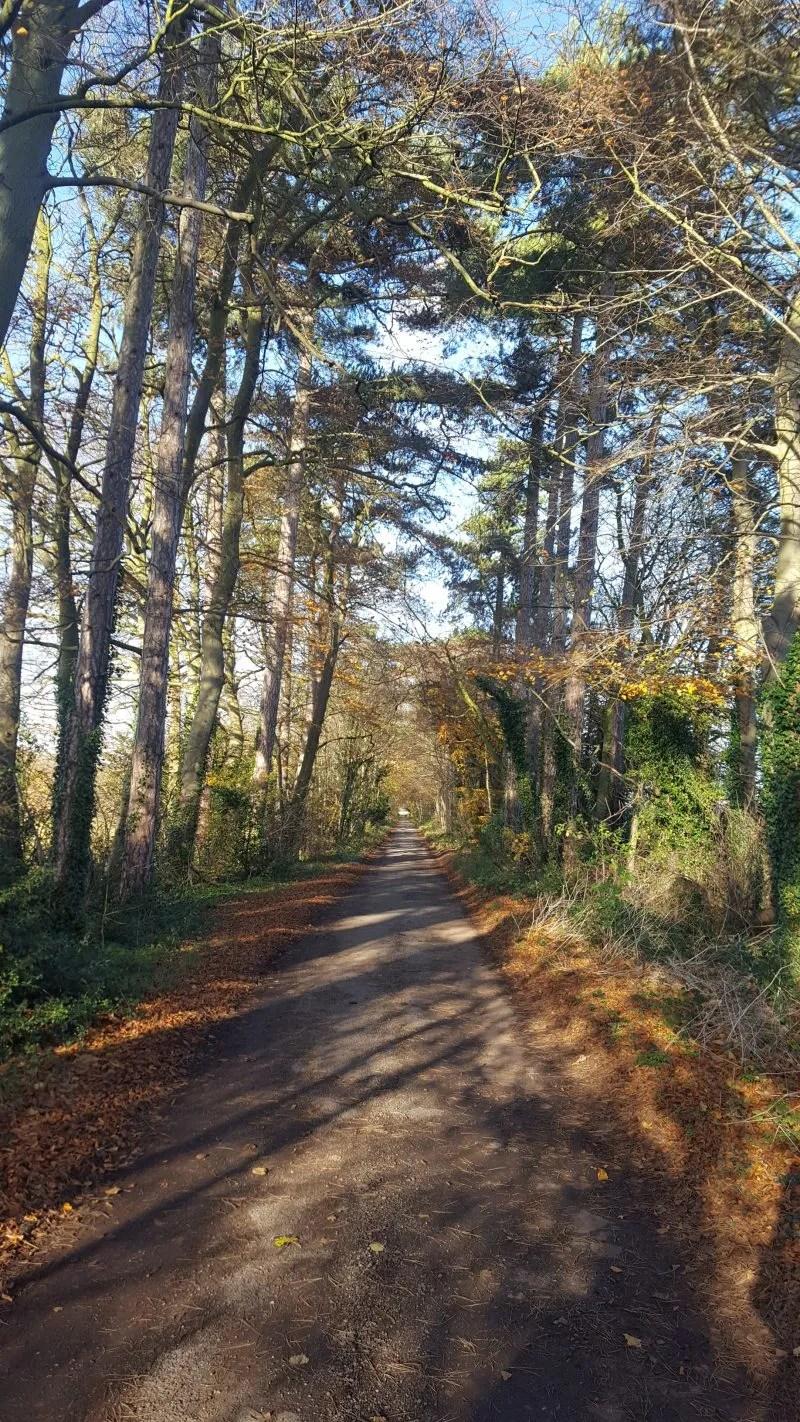 Rural London Walk