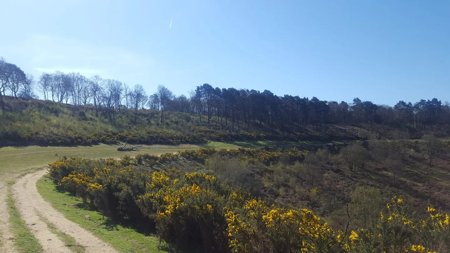 Devils Punch Bowl Hindhead Surrey route of old A3