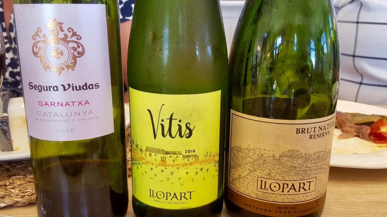 llopart wines