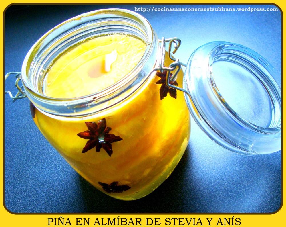 Recetas Stevia (4/6)