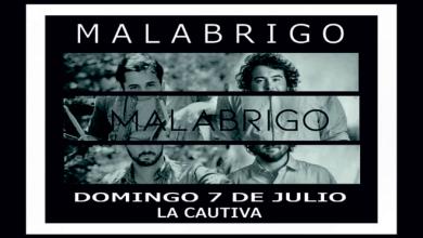 Photo of Malabrigo