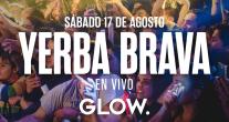 Photo of Yerba Brava en Glow