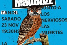 Photo of Mattbuzz  en La Compañía