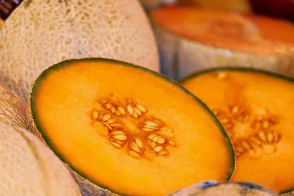 melon-3433835_960_720