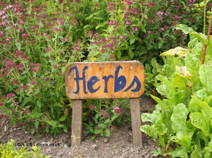 Herb garden at Balfour Castle