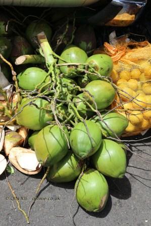 Coconuts, St George, Grenada