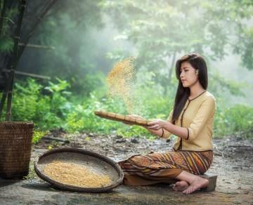 Améliorer la compréhension écrite : les 7 tamis