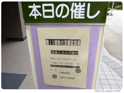 20091025-6 第12回秋の京都盆栽展を京都府立植物園で見る