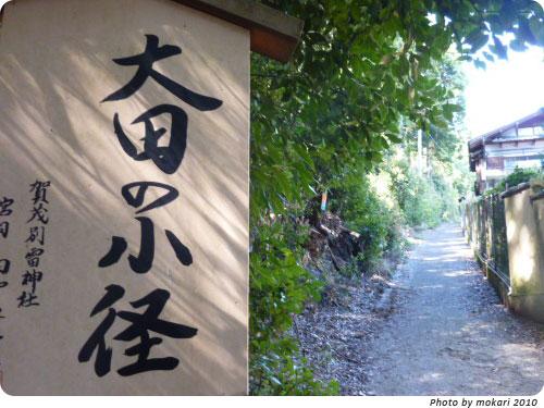 20100412-9 京都市花見:大田神社2010年