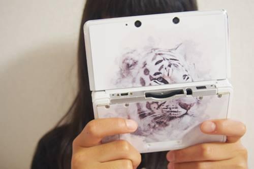 P7176743 3DSを遊んでいる時の見た目を重視する