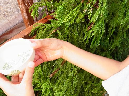 R1155683 下鴨神社みたらし祭2012年