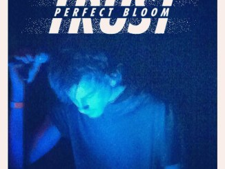 Trust Perfect Bloom Check Yo Ponytail