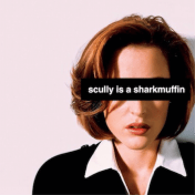 Scully is a Sharkmuffin
