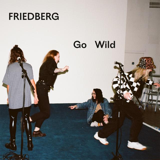 Friedberg Go Wild press photo