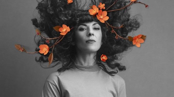 Jamie Drake Redwood Tree cover artwork