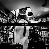 Chilean shoegaze band Parquét share 'Ciudad Norte'