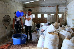 Doña Rosa giving a detailed tour of coffee production, Cuzalapa, Jalisco