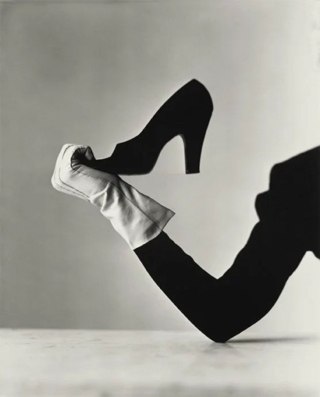 Irving Penn, Glove and Shoe
