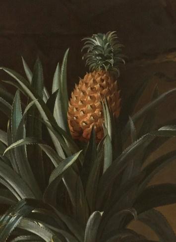 Détails de l'Ananas par Jean-Baptiste Oudry (1686-1755) © château de Versailles / Christophe Fouin