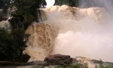 Des recommandations pour la sortie de 5 sites naturels de la RDC de la liste du patrimoine mondial en péril