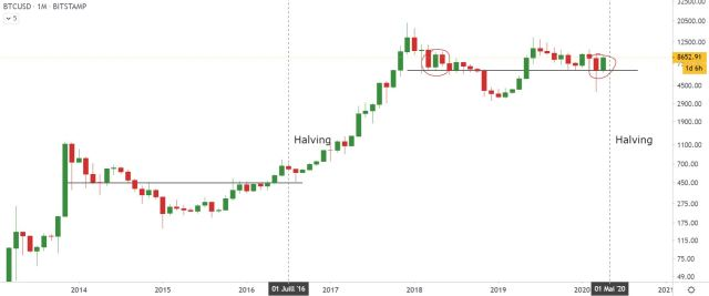 monthly halving