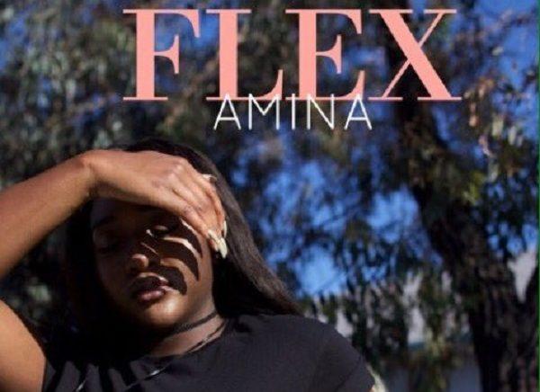 Music : Flex (Prod. by Adey) - Amina