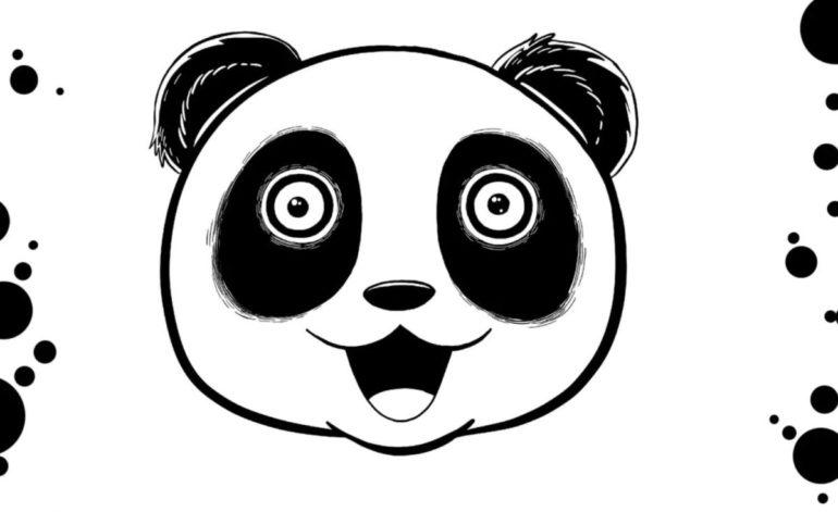 Trash Panda book
