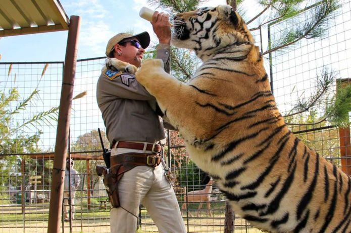 tiger king Joseph Maldonado-Passage