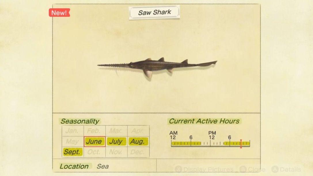 Saw Shark 2