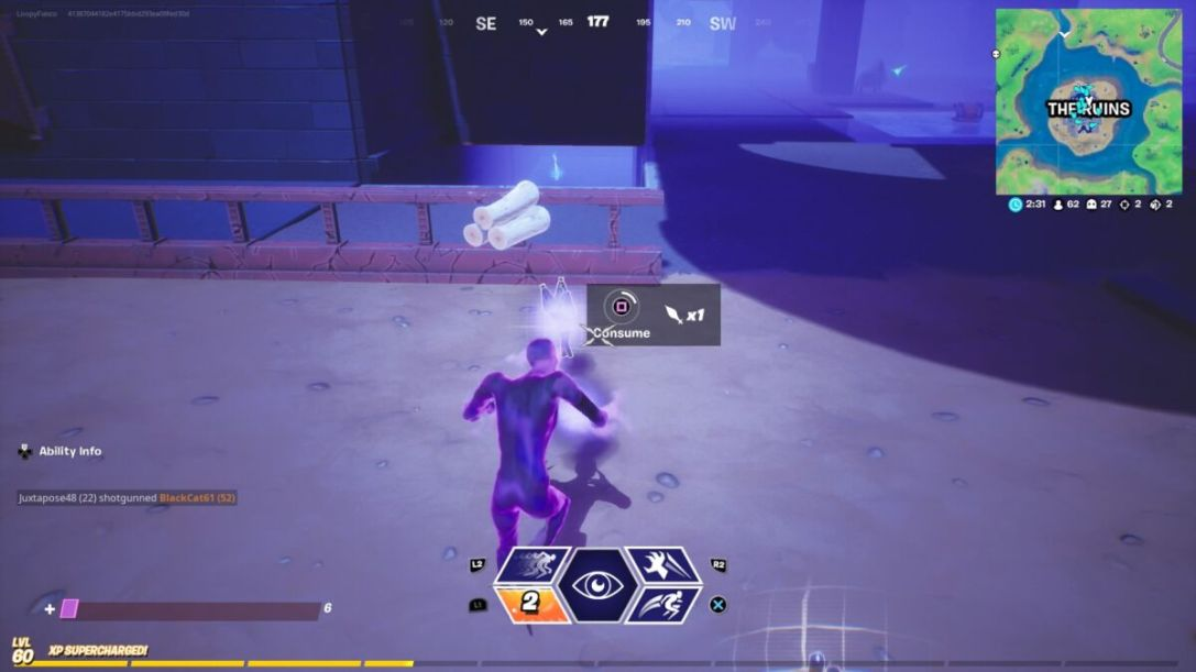 Fortnite Shadow