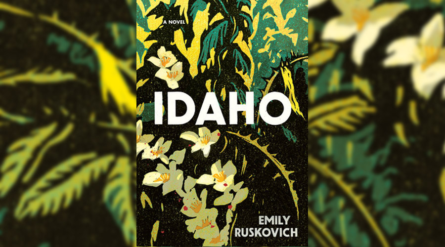 Image result for idaho book