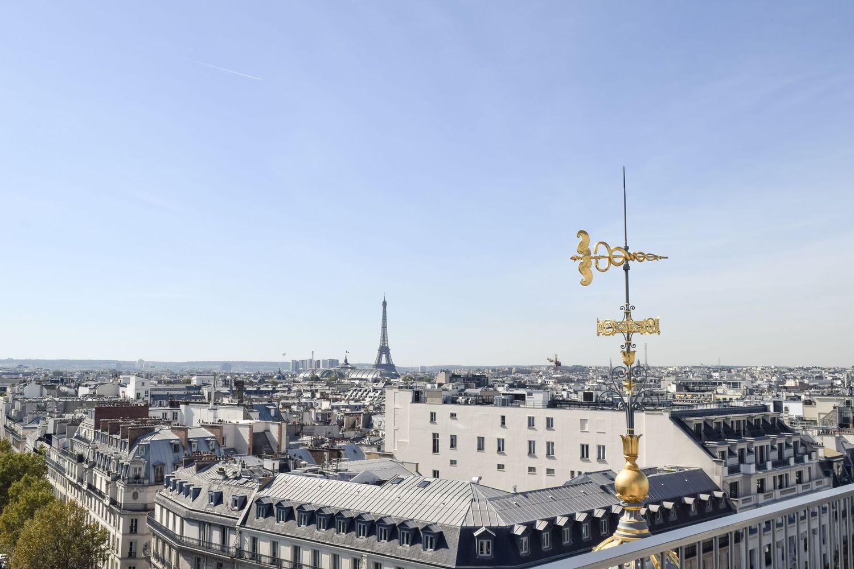 Rooftop Restaurants Perruche Restaurant in Paris