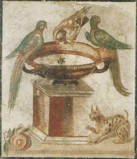 Oiseaux mosaïque