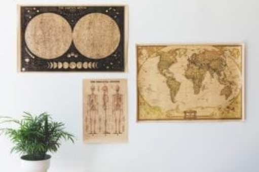 Photograph of an Antique Globe and Skeletal System