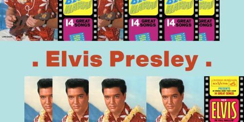 Can't Help Falling in Love – Elvis Presley:歌詞及意思