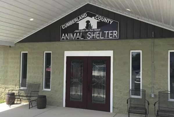 ANIMAL SHELTER – Cumberland County