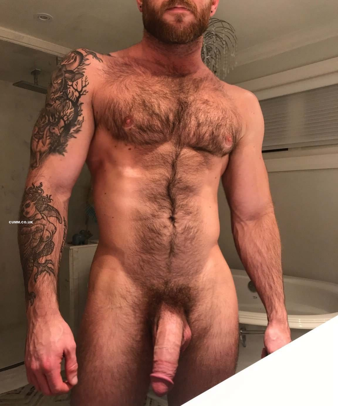 woof big hairy cock and chest