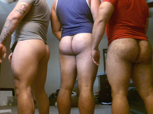 arse collection