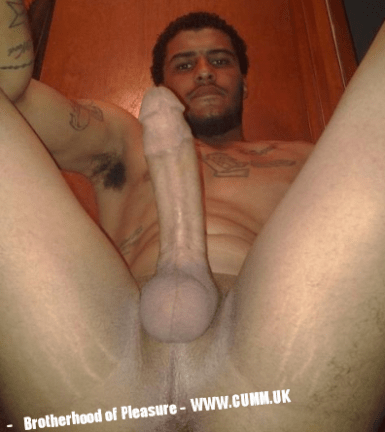 big-black-cock-arse