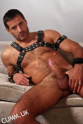 4 dominant leather daddy