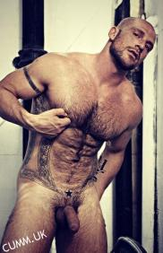 male treasure trail nipples hairy chest
