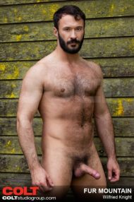 wilfried knight naked erection