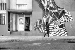 bairro-do-mocho-18