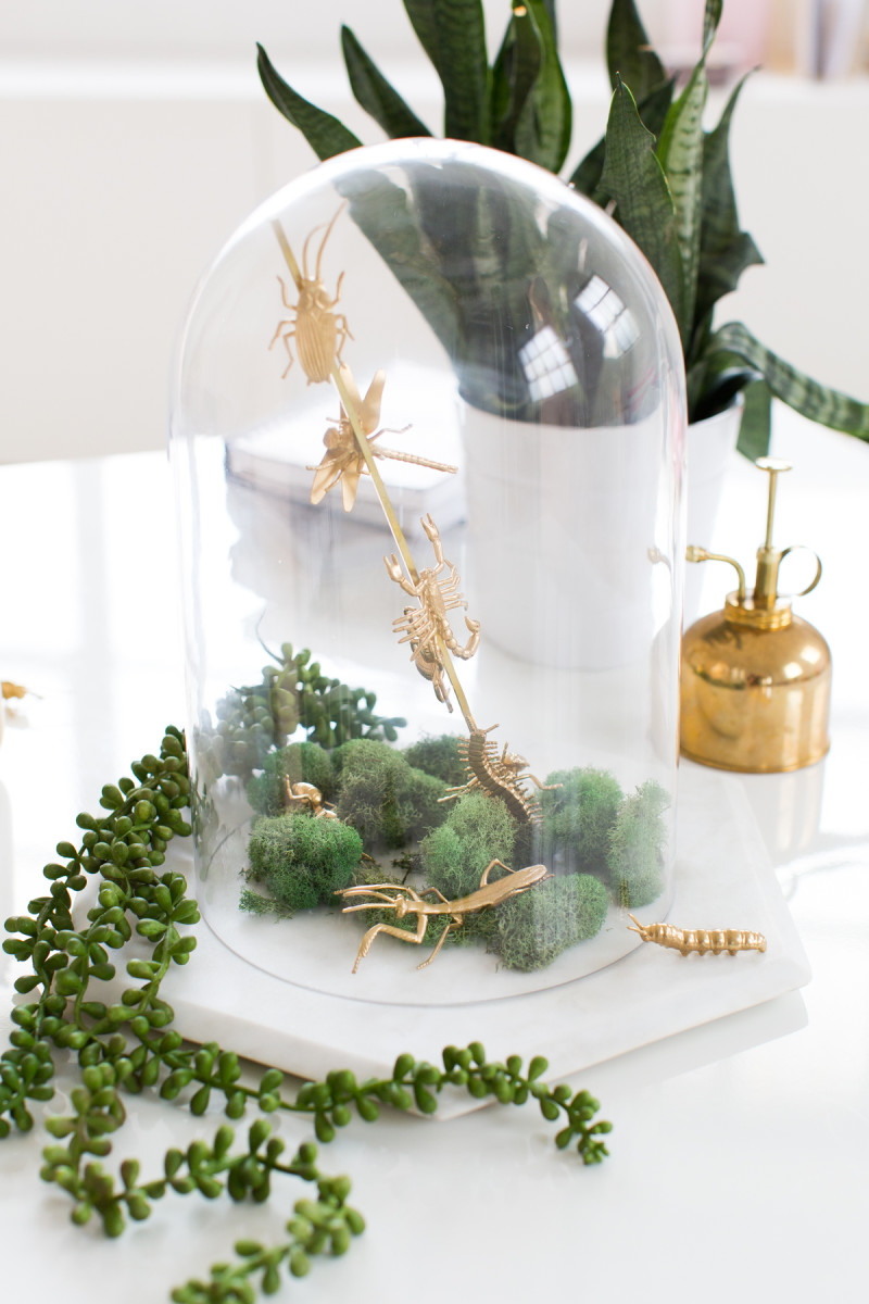 How to Make a Classy Halloween Cloche Centerpiece