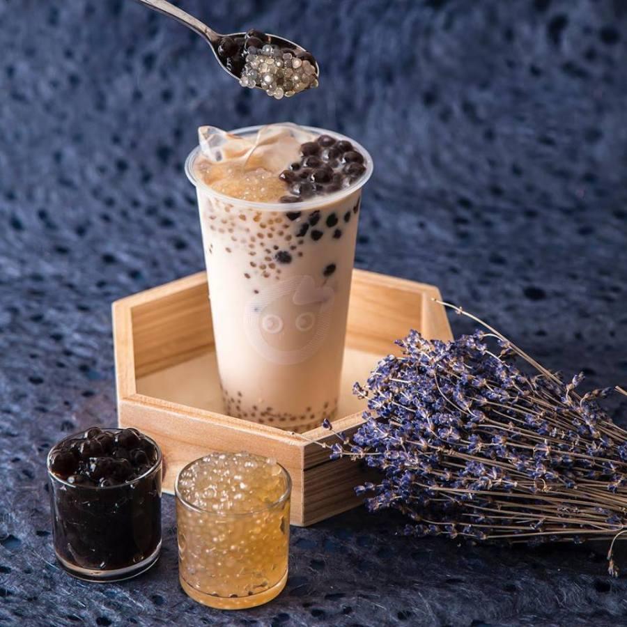 coco-panda-milk-tea