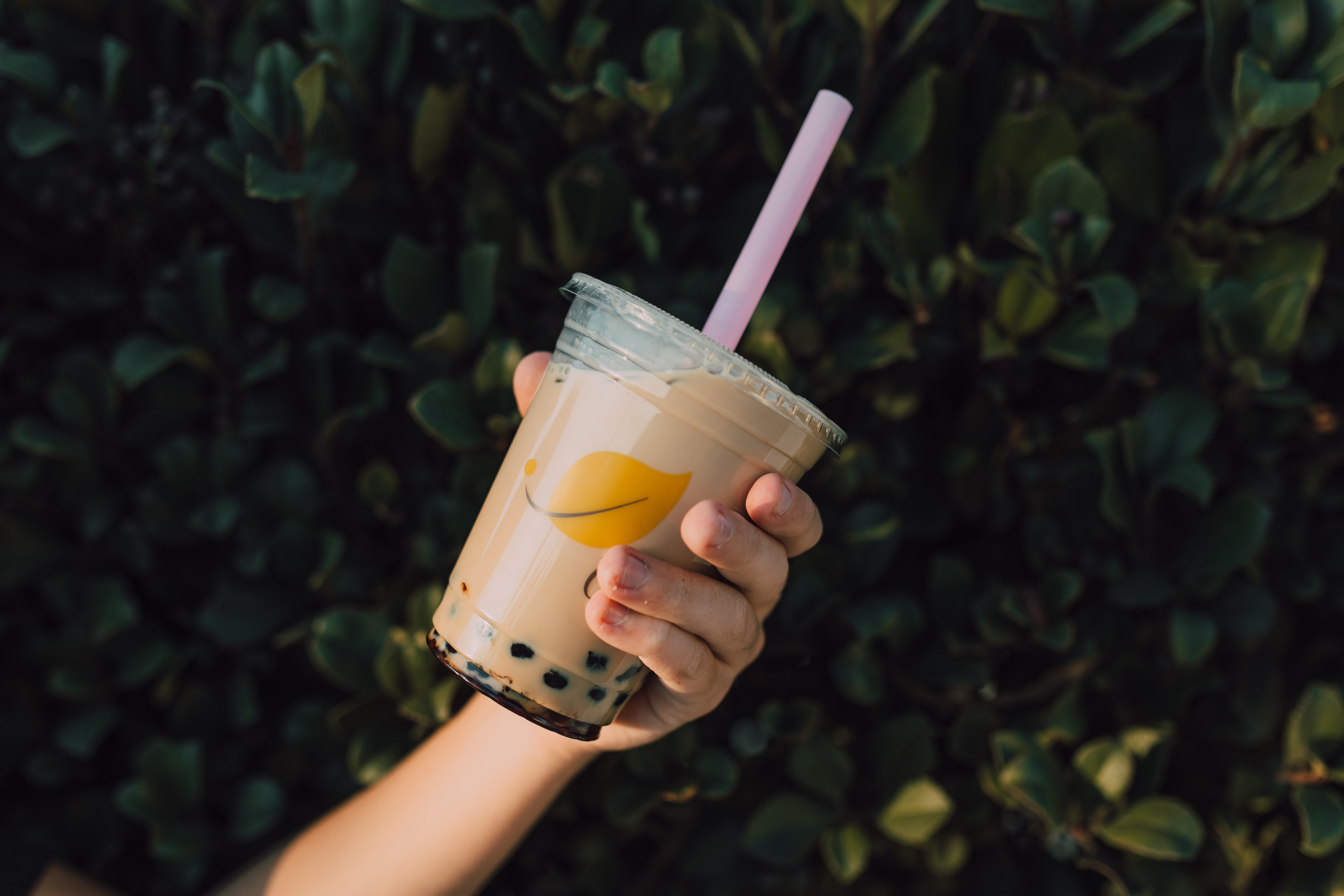 is milk tea business profitable in the philippines?