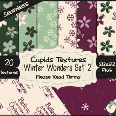 20 WINTERS WONDERS SET 2