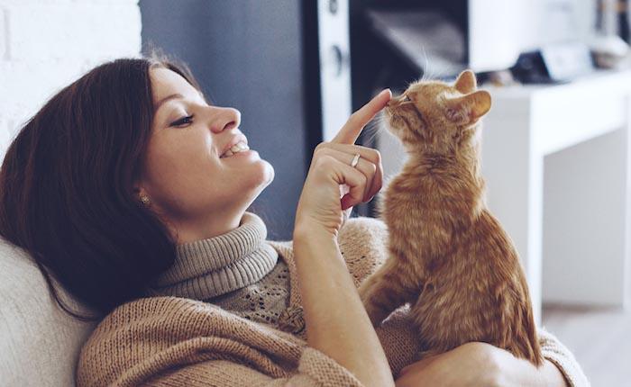 dupa ce adopti o pisica