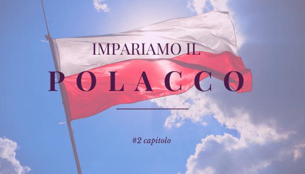 #2 – Impariamo il polacco: declinazione dei sostantivi
